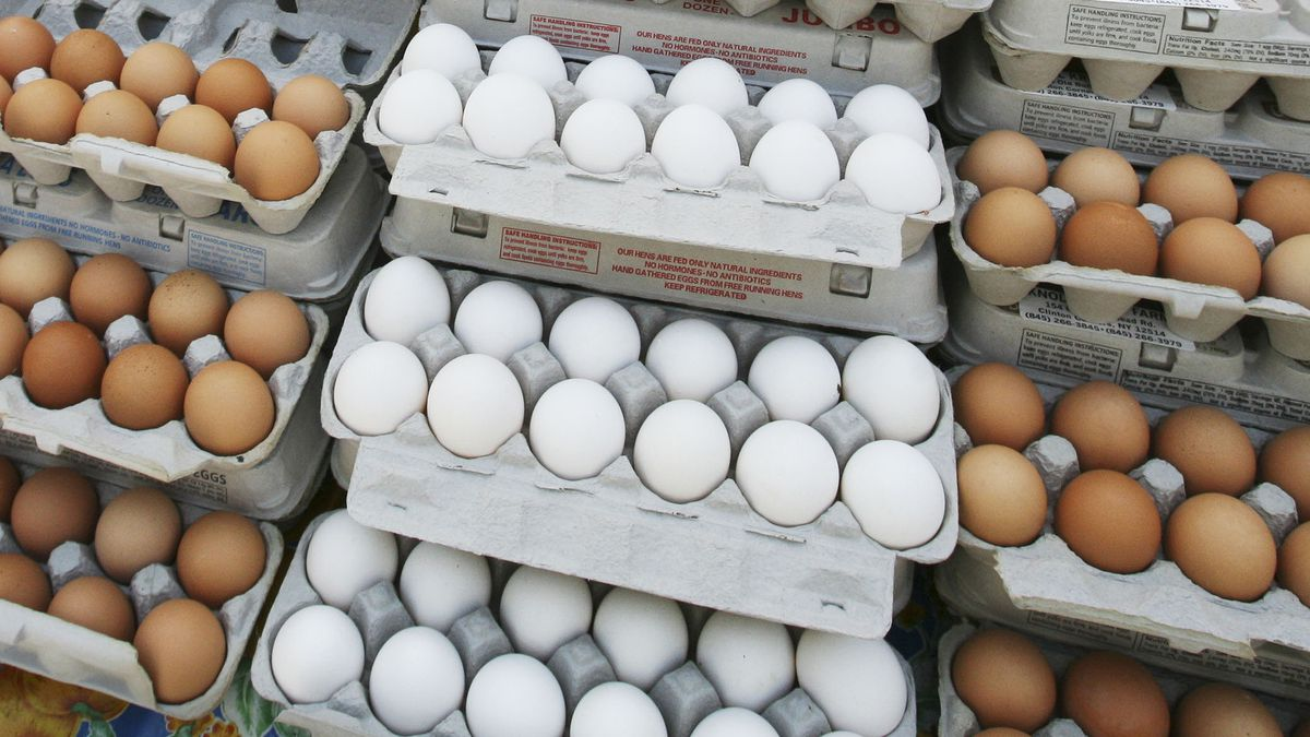 A second lawsuit filed by the West Virginia Attorney General's Office claims Merchants Distributors LLC increased egg prices by more than 200 percent for shoppers during the pandemic.