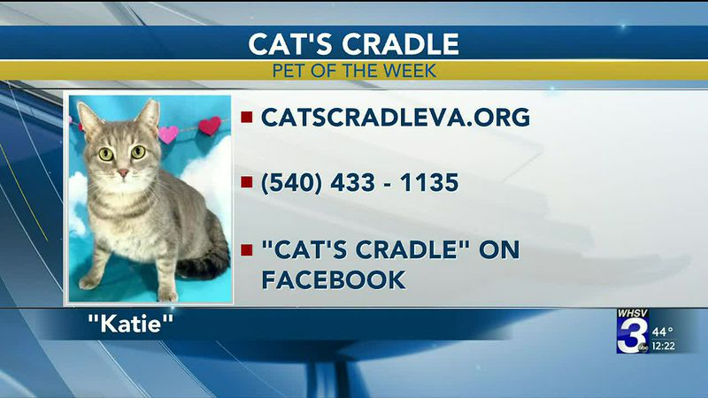 Pet of the Week - March 17