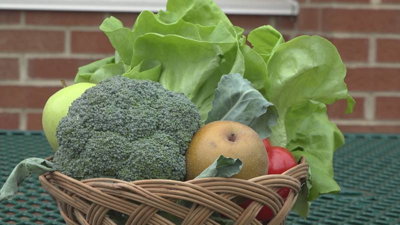 Local produce for HCPS Farm to School week