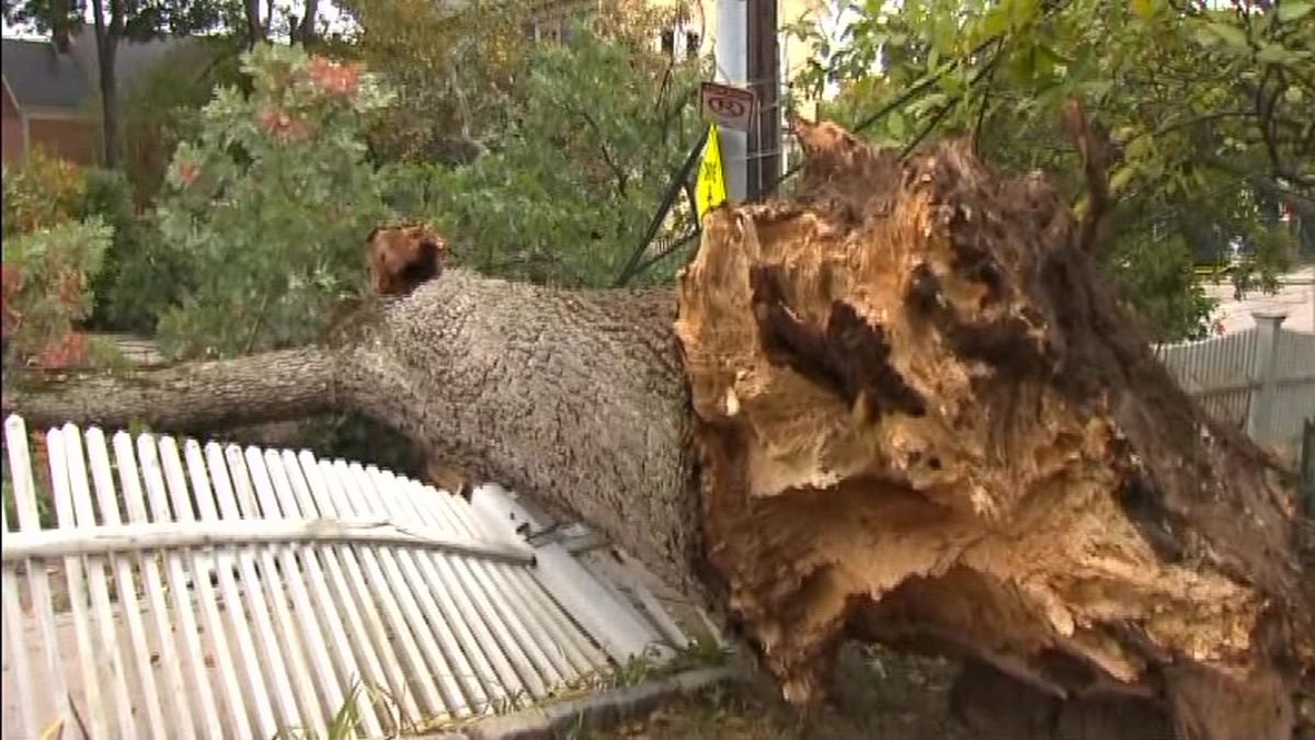 A record-breaking autumn storm plunged hundreds of thousands of people into the dark, toppled trees, canceled schools and delayed trains in the Northeast. (Source: CNN)