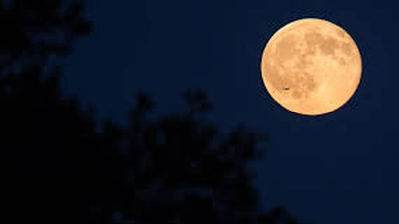 On Wednesday, October's Full Moon will be on display