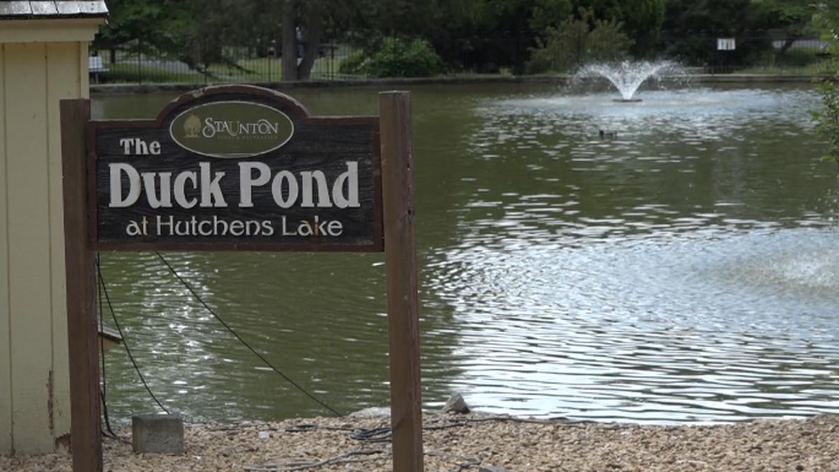 Gypsy Hill Park Duck Pond