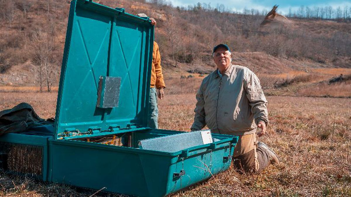 Governor Jim Justice announced Wednesday that the West Virginia Division of Natural Resources...