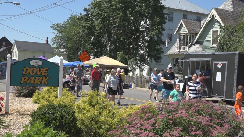 A crowd walks down College Drive to check out the Redbud Festival's vendors.