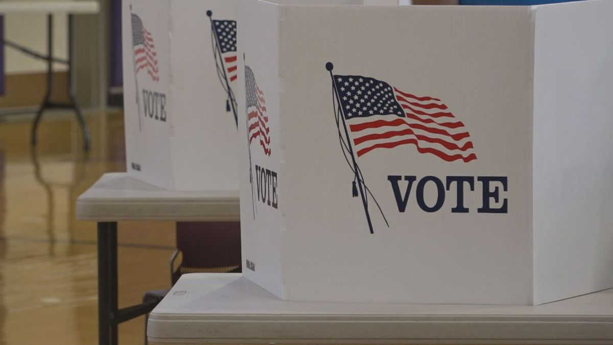 Voter turnout increased among young voters and at college precincts. | Credit: WHSV