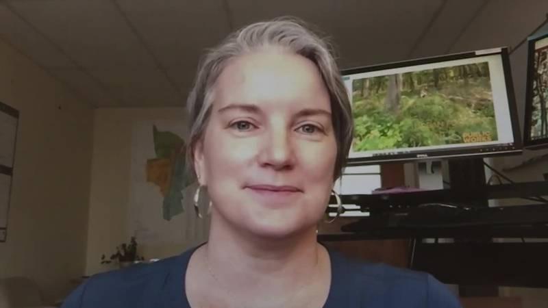 1on1: Harrisonburg wants input on Urban Forestry