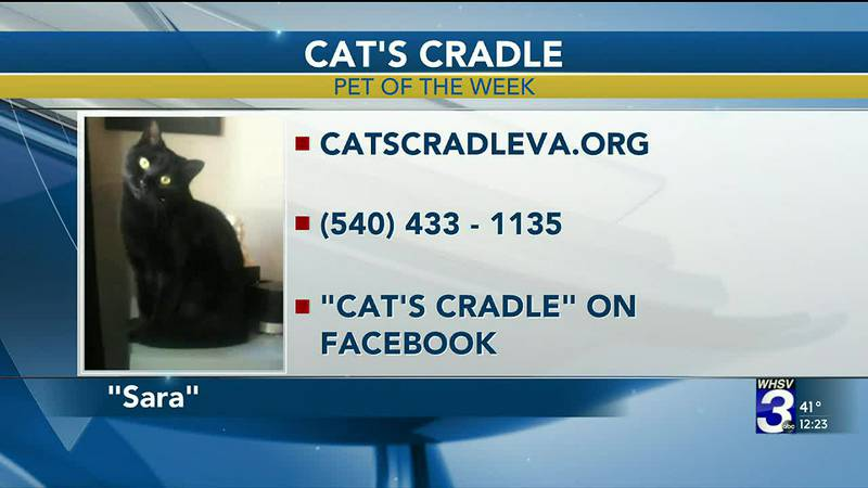 Pet of the Week - January 27