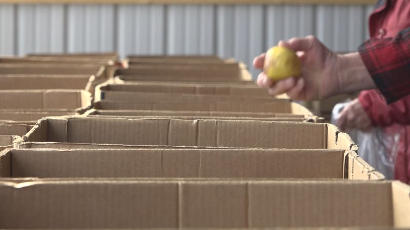 Some food pantries are still seeing an increase in need