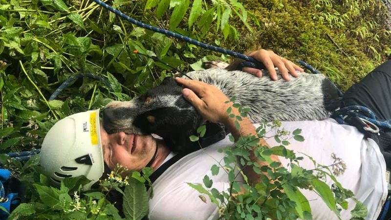 Ruger thanks his rescuer on the way out from a ledge near the Blue Ridge Parkway.