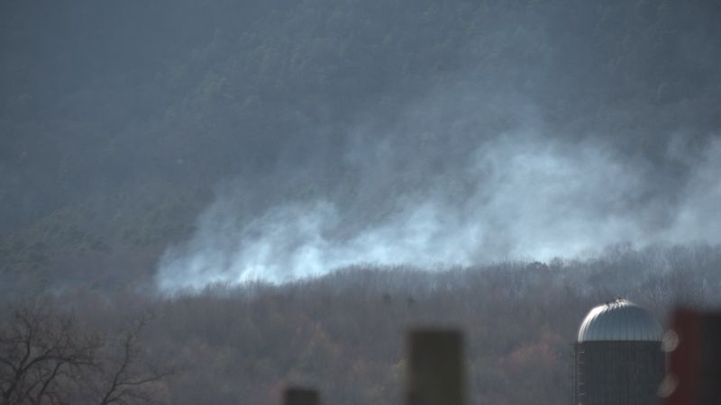 Crews respond to brush fire in Shenandoah