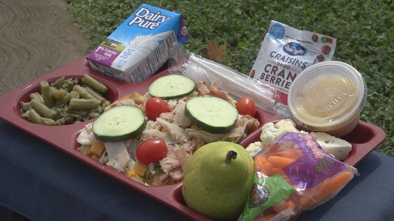 Jeffries said this salad was one of two options served to students at Luray Elementary School...