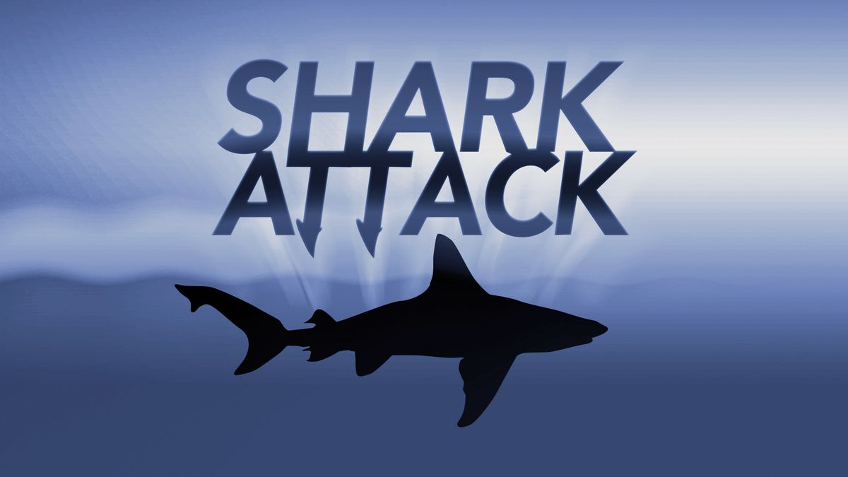Officials say a 30-year-old man from Atlanta received severe shoulder injuries when a shark bit him as he was snorkeling in the Florida Keys.