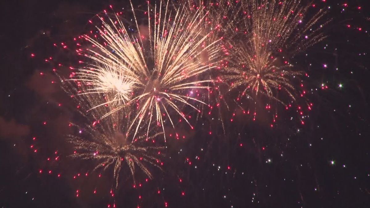 Fireworks sparkling in the sky.