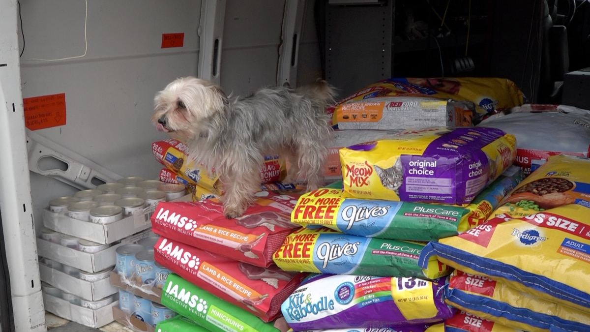 Harvey showing off some of the food that will be given away at the pet food drives over the weekend. | Credit:  WHSV