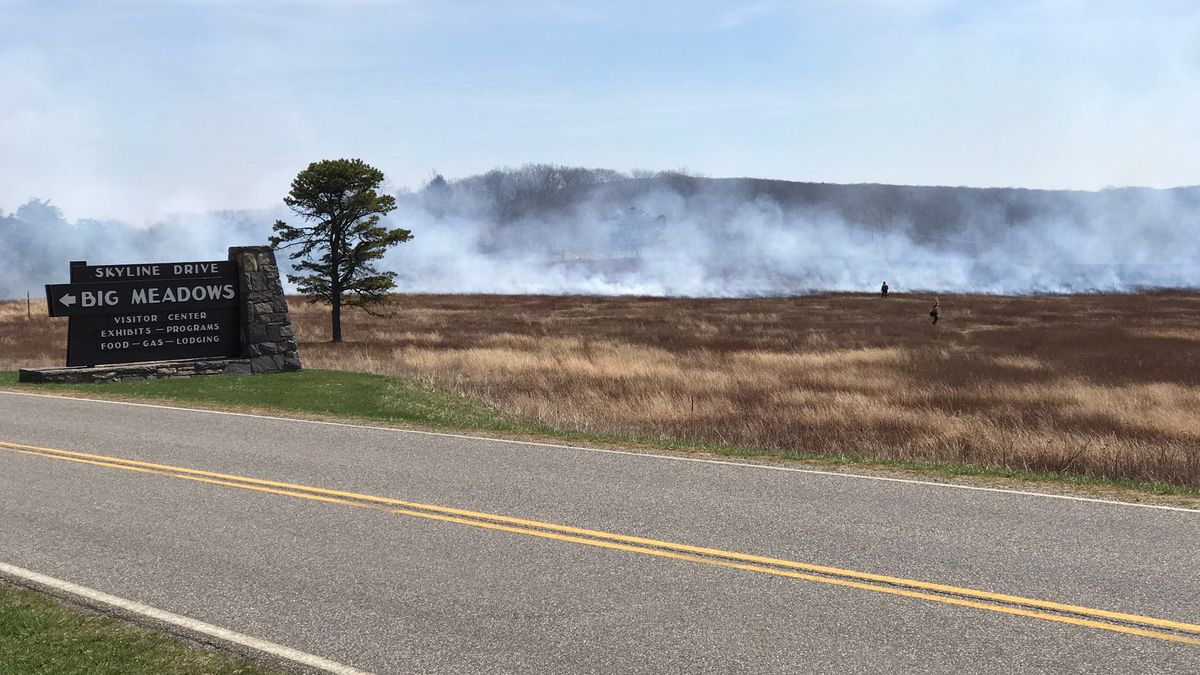 Photo of prescribed burn being carried out at Big Meadows on April 10, 2017, shared to Twitter...