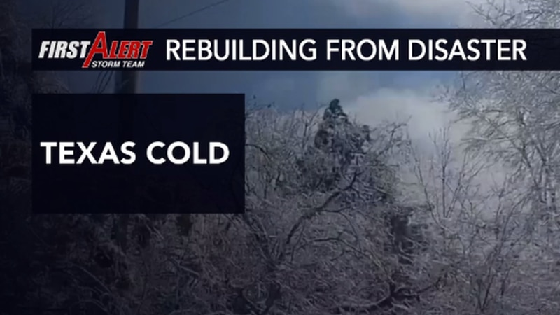 Historic cold hit the state of Texas in February causing numerous problems.