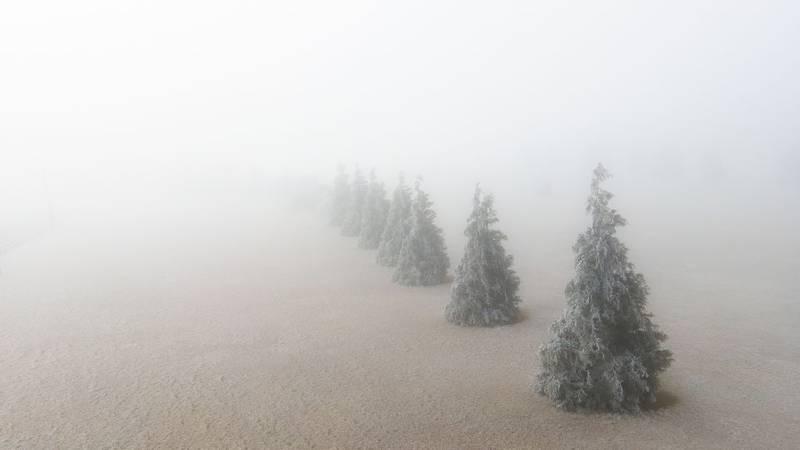 Fog and ice