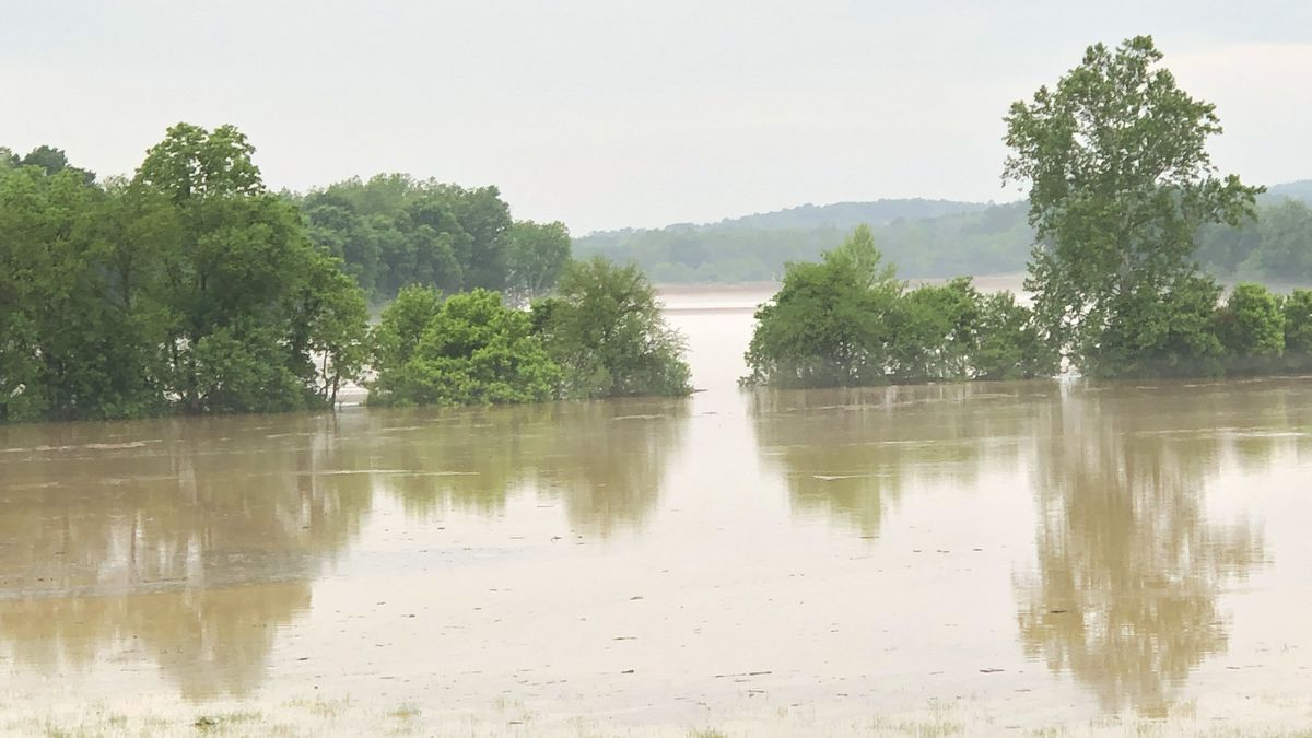Flooding along Meems Bottom in Mount Jackson, submitted to WHSV by Chris