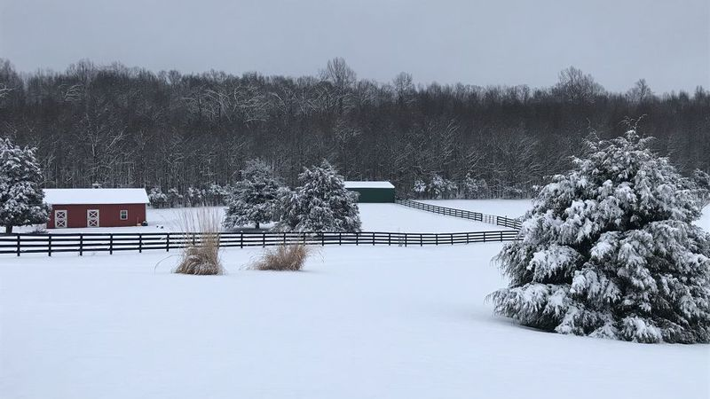 About 6 inches of snow fell in Raphine, Virginia Sunday according to our weather watcher, Doug...