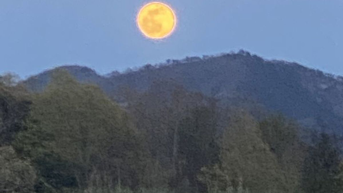 The Pink Super Moon did not disappoint April 26th