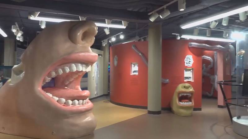 After being closed to the public for over a year, the Science Museum of Western Virginia is...